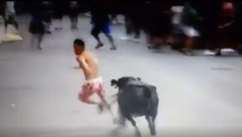 男子狂跑躲避公牛追击 结果却Duang的一声撞上路旁灯杆