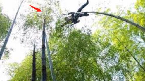 世界上真的有轻功?60岁老人能在竹林上游走,堪比好莱坞大片!