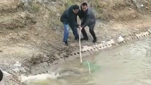 户外捕鱼的大哥,偶然间遇到一条大鱼,3个人才勉强捞上岸!