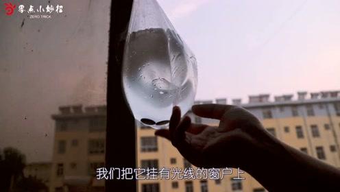 灭苍蝇有妙招,窗户上挂一袋水,放两个硬币,即可轻松搞定