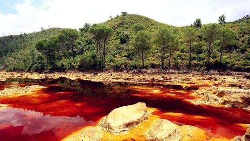 世界最脏的河比恒河还脏 当地人依然拿喝水洗衣做饭