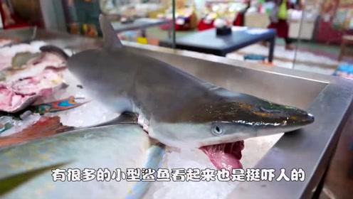 """""""海中霸王""""入侵中国,一来就成美食,网友:简直丢尽入侵者的脸"""