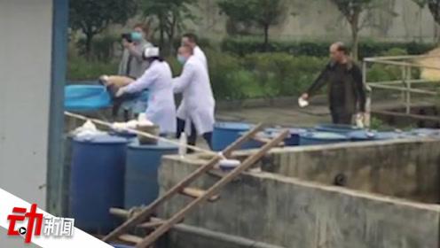 5人施救掉入污水池女工皆身亡 涉事企业事发1周前已停产