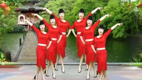 阿珠广场舞《红枣树》流行32步拉丁恰恰舞,动感活泼