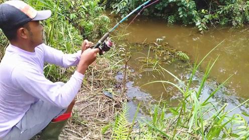 废弃许久的野溪,大叔在岸边抛一竿,结果中鱼速度真快,赶紧收杆