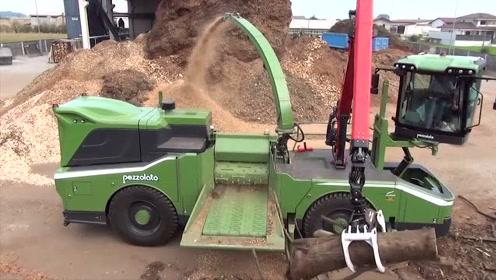 德国大型粉碎机太厉害了,看完木材粉碎过程我服了