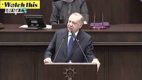 埃尔多安:只有库尔德士兵离开安全区域 土耳其才能停止袭击