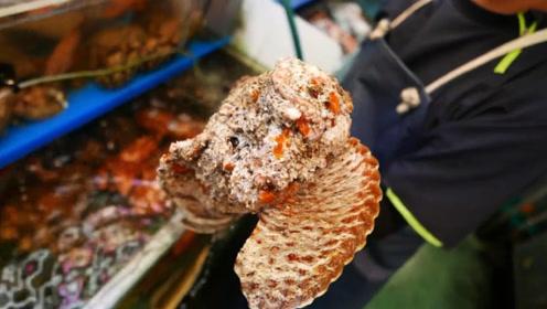 世界上最毒的鱼,被日本人弄来生吃,网友:看外表都反胃