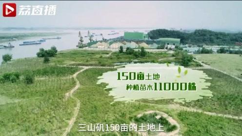 南京此处美景曾被李白写进诗中,如今它又回来了!|黄金时间