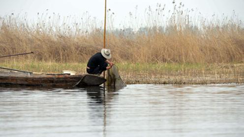 老渔民在黄河中捕到一只巨龟,刚想要放生。却遭到了专家的阻拦!
