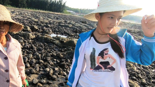 渔夫环海南岛赶海,比当地海螺姑娘还会找螺,天气恶劣照样丰收