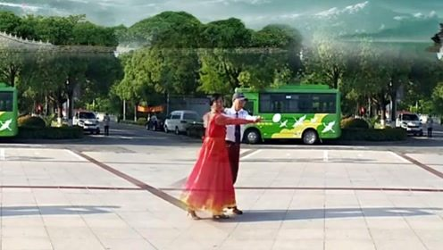 泉水叮咚广场舞《江南情》双人舞中四表演教学