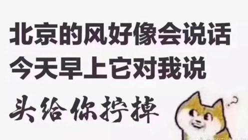 今天的北京风好大,我觉得它会说话,你听到了吗?