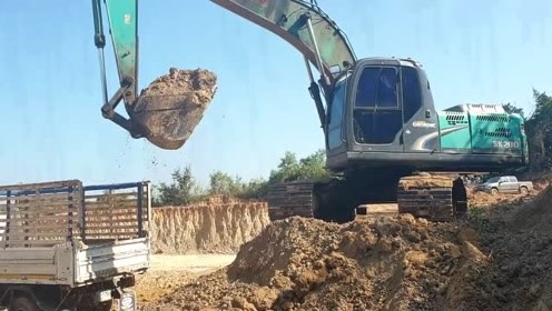 正在作业的挖掘机与运输卡车