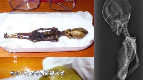 外星人存在铁证?沙漠发现小人遗骸,专家发现与人类有差异