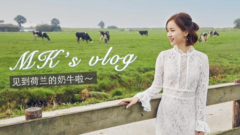 荷兰VLOG|去牧场看奶牛、游风车村,美到舍不得走!