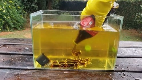 将可乐倒进植物油里面会发生什么?网友:这是太闲了吧