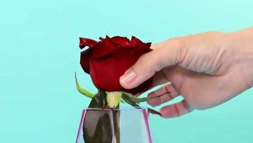 生活小窍门:让玫瑰在花瓶里漂浮的小技巧,仿佛有魔力存在