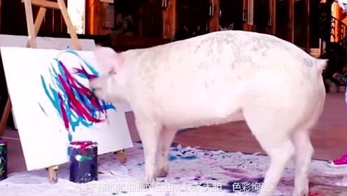 一只擅长画抽象画的猪,并被称为猪加索,而且一幅画卖了数千英镑