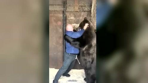 熊:你揪我耳朵了,疼疼疼!