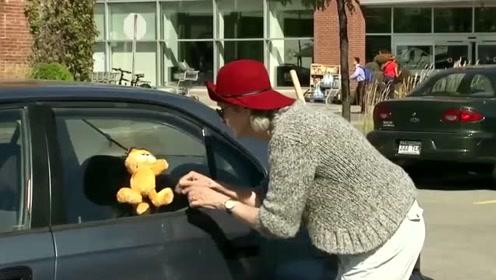 国外恶搞:路人帮老奶奶找猫咪,发现在车玻璃上,老奶奶拆了玻璃