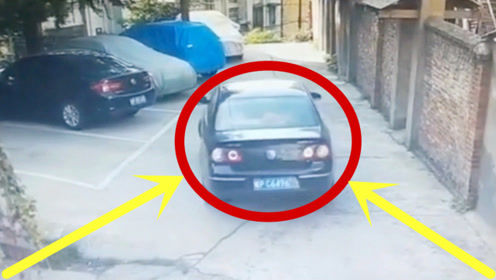 女司机撞车拆墙一气呵成,一点都不拖泥带水,丈夫丝毫不敢抱怨!