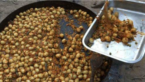 印度人是如何吃鹌鹑蛋的?一次煮500个鹌鹑蛋,出锅瞬间没食欲了