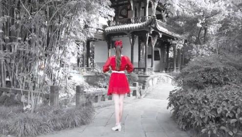 春夏秋冬 - SNH48,如此娇艳煞是美丽
