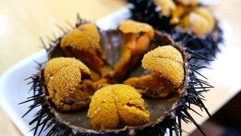 日本大厨这样处理海胆,手法一看就不简单