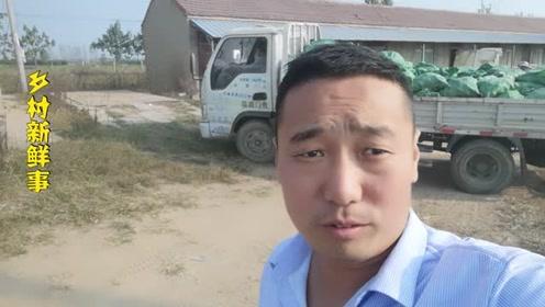 """农村小伙去收购点卖红薯,""""西瓜红""""红薯,七毛钱一斤,贵吗?"""