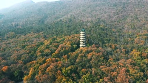 在灵谷寺,抓住南京的秋天!