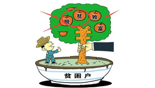 """农村将实施""""三免""""政策,农民越来越""""富裕"""",不懂要吃大亏"""