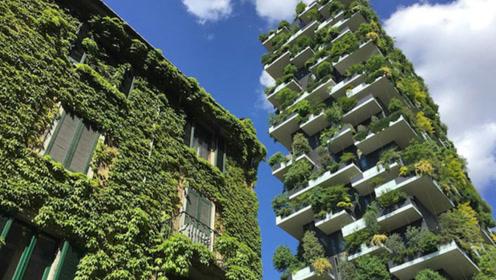 名副其实的绿色公寓 墙上种着上万棵植物 夏天都不用开空调