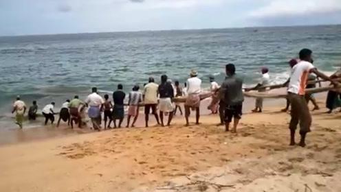 见识一下印度捕鱼法,全村齐力上阵,场面简直太壮观,收获让人酸了!