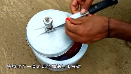 压力锅中放入金属钠和水,下一秒反应剧烈,发生镜头记录全程