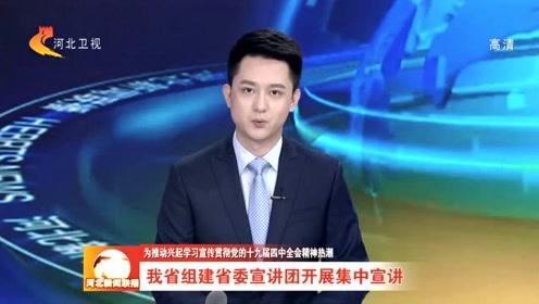 河北省组建省委宣讲团开展集中宣讲