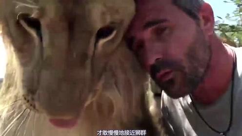 威武霸气的狮子遇上大叔之后,就变了,像猫咪一样乖巧可爱