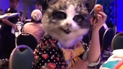 小姐姐带上猫咪的头套,看起来非常的逼真,都把我给惊到了!