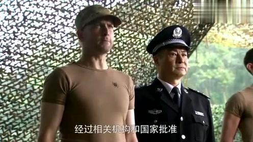 这老外行啊,竟然还知道太岁头上动土,属实中国通啊