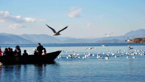 云南大理的洱海,风景优美安静,特别的适合养伤