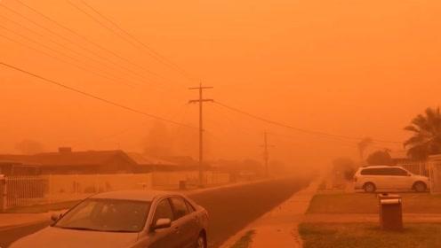 """沙尘暴席卷澳大利亚米尔迪拉 整座城市蒙上橙色""""滤镜"""""""