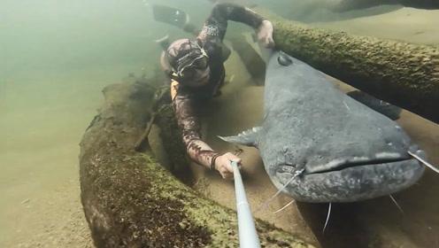 河底全是罕见的大鱼,悄悄靠近合影,奈何大鱼不配合