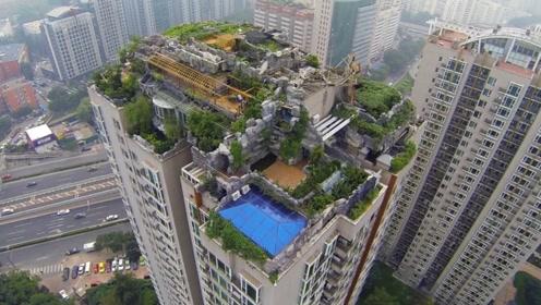 """北京一大爷,在房顶建造""""空中花园"""",刚建好就要面临强拆了"""