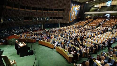 出奇一致!185个国家全部同意,联合国史上唯一一次全票通过