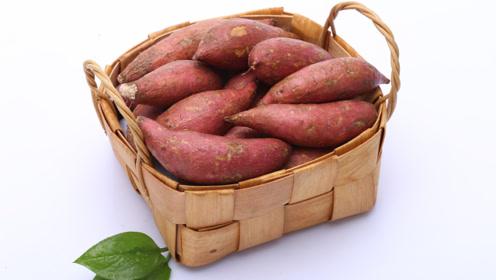 发现2种祛湿好食物,经常吃能排出多年宿便