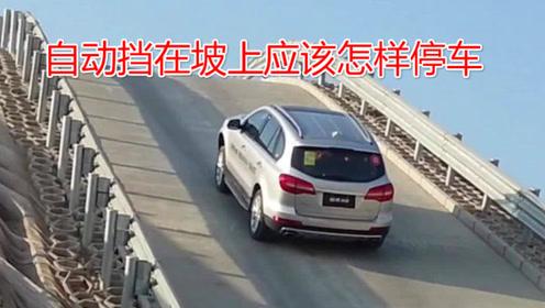 自动挡坡道停车应该怎样操作,老司机现场演示,既不伤车也不溜车