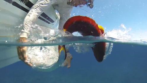 珊瑚礁上钓鱼,各种名贵鱼也太多了!