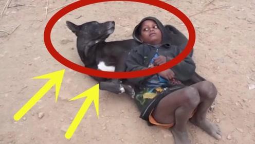 """非洲孤儿男孩,把狗狗当做唯一的""""亲人"""",这一幕好凄凉!"""