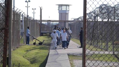 世界上不怕犯人越狱的监狱,四周都是野兽,跑就是死路一条