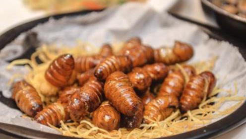 高蛋白的蚕蛹有这么多好处,不吃可就错过了